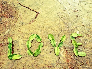 Love Laureate